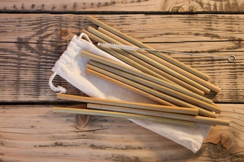 Bambus_Intignis-ausgepackt2